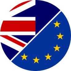 NZ & EU Flags